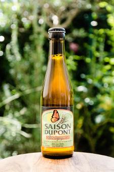 Saison Dupont Bio - Brasserie Dupont - Ma Bière Box