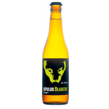 Lupulus Blanche - Brasserie Lupulus - Ma Bière Box